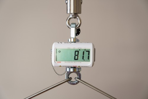 Handi-Move  - Digital scale